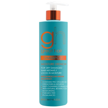 Great Hair Moroccan Argan Oil Extract Shampoo